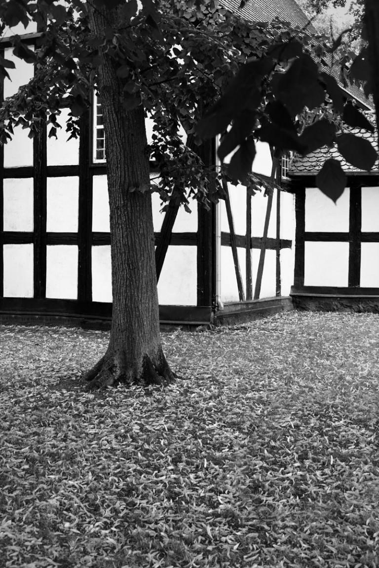 Patrick Jendrusch Photography PSALM – D´Scene